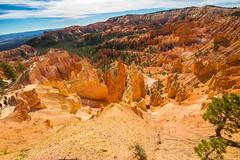 Bryce Canyon (joshbousel) Tags: bryce brycecanyon brycecanyonnationalpark hoodoo hoodoos nationalpark northamerica places queensgardentrail travel unitedstates unitedstatesofamerica usa ut utah