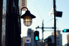 (  / Yorozuna) Tags:              lightbulb light illumination lightingequipment   retro retrospective  shinjukuward  tokyo japan pentaxautotakumar55mmf18