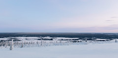 Lappland - Laponie ( Mathieu Pierre photography) Tags: lappland laponie finnland lapland snow north night sky light silence nature landscape northern polar circle sunlight extrieur coucher de soleil