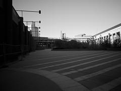 plaza (iMatthew) Tags: brutalism brutalistarchitecture architecture bostonarchitecture boston governmentcenter bw