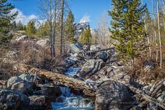 Taggart Creek (scepdoll) Tags: grandtetonnationalpark taggartlake bradleylake hike wyoming jacksonhole jackson