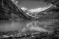 On a hike around  Lake Louise (paul_malen) Tags: albertacanada jaspernationalpark banffnationalpark canadianrockies