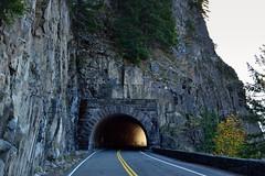 Light at the End of the Tunnel (Mount Rainier National Park) (thor_mark ) Tags: blueskies capturenx2edited colorefexpro day5 highway hillsideoftrees lookingeast mountrainiernationalpark nature nikond800e portfolio project365 road stevenscanyonroad stevensridge trees triptomountrainierandcolumbiarivergorge tunnel wa unitedstates
