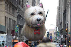Thanksgiving Day parade 2016 NYC (zaxouzo) Tags: thanksgiving parade floats nyc public people 2016 nikond90