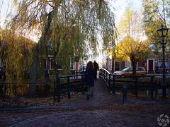 Small Bridge (PaaulDvD) Tags: netherlands holland pays bas marken volendam waterland water sun sky colors typical fog light outside