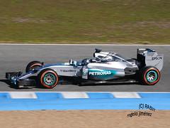 N. Rosberg - MERCEDES (RABIIT) Tags: f1 sauber rosberg mercedes ferrari vettel sainz toro rosso rabiit