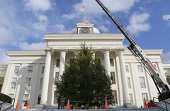 11-28-2016 State Christmas Tree Arrives at Capitol