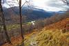 Woodland Walk (eric robb niven) Tags: ericrobbniven scotland glenlyon woods perthshire landscape bridgeofbalgie hills walking hillwalking