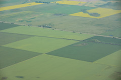 Checkerboard Fields (Ben_Senior) Tags: moosejaw saskatchewan canada prairies greatplains plains fields farm field green yellow orange train landscape clouds cloud puffy cumulus sky blue shadow flying flight aerial aviation aircraft airplane plane bensenior nikon d7100 nikond7100 pilot ppl city flat