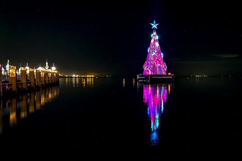 Geelong Floating Xmas Tree-11