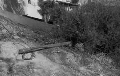 exakta_vx_kodak_triX_400_haifa_fire_26_nov_2016_022 (avitalnatanson) Tags: exakta fire damage kodak trix arson terror haifa carmel