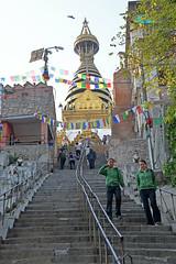 DSC_3428templestairs (BasiaBM) Tags: swayambhunath monkey temple kathmandu nepal