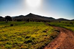 Camino haca el Sol (domimb_) Tags: sol camino montaa tutorial cabodegata efectoorton