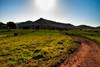 Camino hacía el Sol (domimb_) Tags: sol camino montaña tutorial cabodegata efectoorton