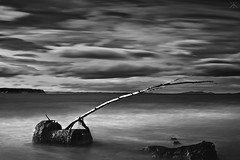 Ahuriri (Kyle Kruchok) Tags: ocean new longexposure newzealand sky blackandwhite bw beach rock port coast log long exposure decay zealand nz napier 1000x ahuriri nd110 tenstop