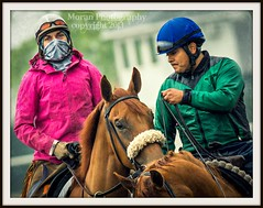 Masked Rider (EASY GOER) Tags: park horses horse ny newyork slr sports racetrack race canon photography track exercise state action belmont tracks running racing course flats event 7d athletes workout races sporting thoroughbred equine thoroughbreds belmontpark equines sportofkings