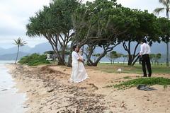 IMG_13737 (mudsharkalex) Tags: hawaii groom bride oahu kaneohe otherpeoplesweddings kualoaregionalpark kneohe kaneohehi kneohehi