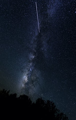 Streaking Satellite (Phoenix Rising Photography) Tags: longexposure travel trees night stars nikon satellite grandcanyon may roadtrip ufo adventure astronomy d800 lightroom milkyway reallyrightstuff nightshooting grandcanyonnationalpark noiseware 2013 navajopoint astrophography norestfortheweary 1424mmf28 starphotography tonykuypersactions 24hrsnosleep