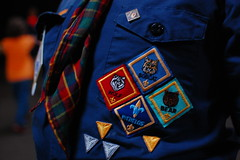 Patches (radargeek) Tags: bear wolf bobcat patches webelos cubscouts bsa kidcam