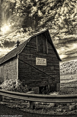 Barn with a statement (citrusjig) Tags: sign wisconsin barn work spring driving message pentax driveby abortion infrared fields toned manualfocus kx clearglass fullspectrum zenitar16mmf28 converteddslr bw090redfilter ruralworld antiwomanbw