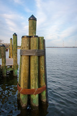 City Dock Pylons (Karol A Olson) Tags: water dock maryland annapolis pylons citydock