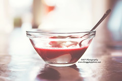 Coconut pudding with raspberry sauce (l AKP Photography) Tags: food beautiful photography beautifullight foodporn matte raspberrysauce foodlove coconutpudding akpphotography bloggakpphoto