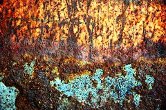 FRS101113 (Chance Agrella) Tags: metal peeling painted textures rusted rusting scratched decaying