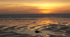 Cable Beach Sunset G1X1766