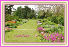 Garden Fresh (bigbrowneyez) Tags: city trees beautiful gardens alberi landscape colours view farm scenic spacious colourful fiori assortment delightful giardino bellissima farma gardenfresh farmflowers ottawaontariocanada thecentralexperimentalfarm thecanadianexperimentalfarm