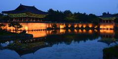 Asian Evening Pond - G (Leigh MacArthur) Tags: travel trees roof reflection tree water wall night dark asian 50mm lights pond nikon asia dusk peaceful palace korea korean nikkor leigh gyeongju  macarthur d800      anapji 2013 kyoungju   gyoungju polargrape