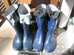 morning sun on wellies_drying our wet socks and boots (yvonne_2.0) Tags: old blue me wet socks mine boots melanie yvonne dirty worn blau welly wellies smelly galoshes rubberboots soggy gummistiefel wellingtons gumboots flooded nass smelling rainboots laarzen wellworn squelchy regenstiefel squelching schmatzig glucksend
