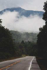 (Emily Boyer Photography) Tags: travel summer nature vertical forest vintage landscape photography woods hipster scenic adirondacks adventure explore indie hippie emilyboyer