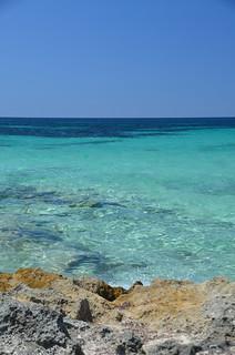 Mallorca (a0008351)