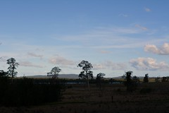 flood flats in cloud shadow (dustaway) Tags: trees shadow sky landscape countryside afternoon australia nsw clarencevalley northernrivers thebroadwater floodflats clarencebroadwater