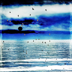 there is a big, a big hard sun (1crzqbn) Tags: blue sunset seascape color nature birds reflections square textures 7d blacksun hss 1crzqbn sliderssunday thereisabigabighardsun