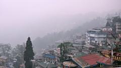India - West Bengal - Darjeeling - Overview - 60 (asienman) Tags: india darjeeling westbengal asienmanphotography