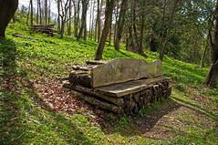 Uppark Woodland Walk (Jainbow) Tags: gardens forest bench shot walk uppark jainbow