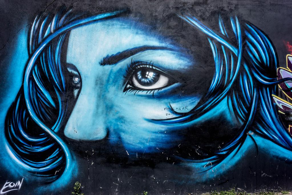 STREET ART IN DUBLIN - CABRA PARK URBAN GALLERY [A REALLY UGLY LANE]-104060