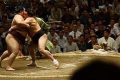 日馬富士 画像29