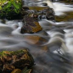 Stream ND Square 1 (MarkWarnes) Tags: river stream slow northumberland burn tarn ndfilter kielderforest