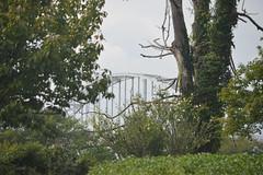 Chesapeake Cilty 025 (dena429) Tags: chesapeakecilty maryland cecilcounty bridge cdcanal chesapeakecitybridge tiedarchbridge 1949 intercoastalwaterway steel steelbridge archbridge outdoor architecture engineering transportation structure arch beam girder