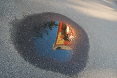 the temple in the puddle 2 (M00k) Tags: reflection puddle temple sensõji asakusa tokyo japan