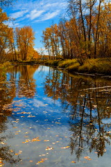 Reflections of Autumn (stevenbulman44) Tags: 2470f28l lseries filter autumn fall canon landscape outdoor blue sky tree color polarizer
