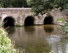 River Avon Salisbury Wiltshire (Sweet Mango 1965) Tags: salisbury 2016 river avon wiltshire bridge water landscape