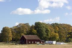 The Red Stable (Steffe) Tags: nödestastallet stable nödestavästergård haninge sweden höst fall autumn