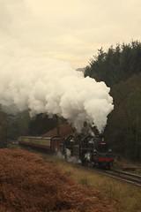 Raindale (feroequineologist) Tags: 76038 76079 76084 nymr northyorkshiremoorsrailway levisham levishamstation steam railway train