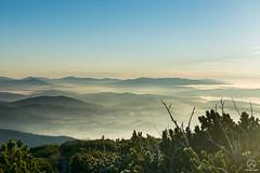 W otoczeniu Babiej Góry (czargor) Tags: mountians landscape sunrise dawn clouds