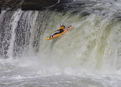 288/366 Ohiopyle Falls Festival (zodia81) Tags: ohiopylefallsfestival fallsrace ohiopylestatepark ohiopyle overthefalls pennsylvania pa whitewater kayaking rafting americanwhitewater youghioghenyriver theyough kayak 2016 365project 366 dailyphoto