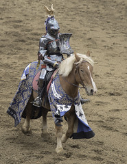 Knight in Shining Armor (dcnelson1898) Tags: folsom california outdoors renaissancefair event costume joust tudor medieval
