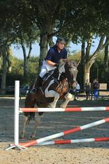 IMG_4896 (Bas & Emily) Tags: horse horses horsejumping jump jumping rijden paard paarden springen springwedstrijd sport belleepoque hindernis